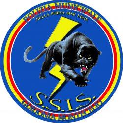 Logo SSIS